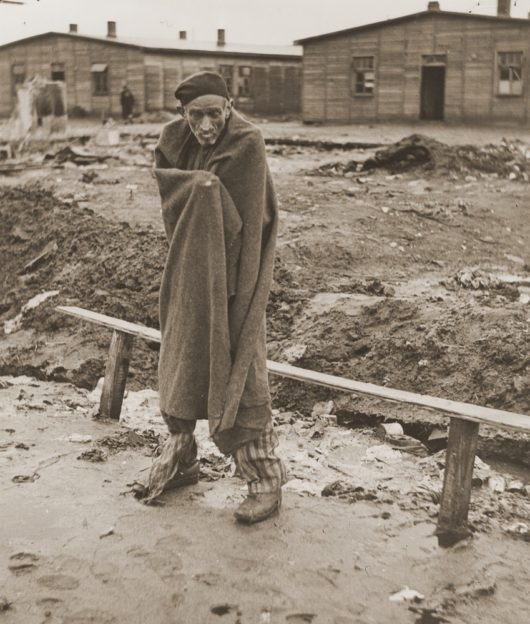 Survivor in Stalag Sandbostel